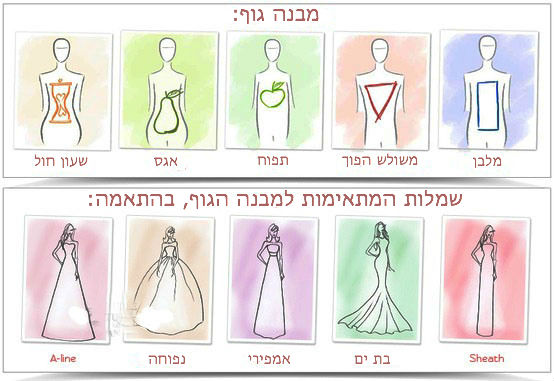 התאמת שמלה למבנה גוף